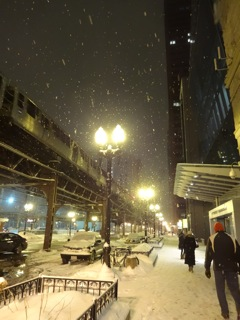 Snowy Night Chicago Copyright Elaine Luther 2014