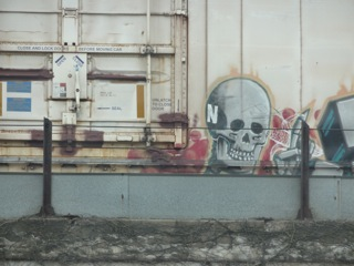 Cool Graffiti on Train, photo copyright Elaine Luther, 2014