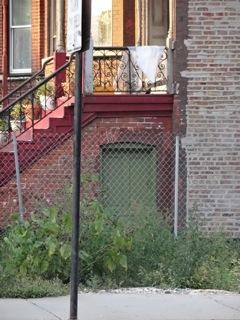 Green Door Pilsen by Elaine Luther