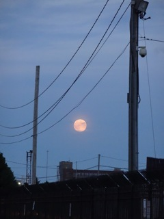 Moon Over Pilsen Copyright Elaine Luther