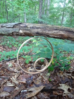 """Double hoops on downed tree branch"" Copyright 2015 Elaine Luther. All rights reserved."