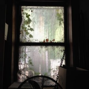 Fan and Window, copyright Elaine Luther 2016