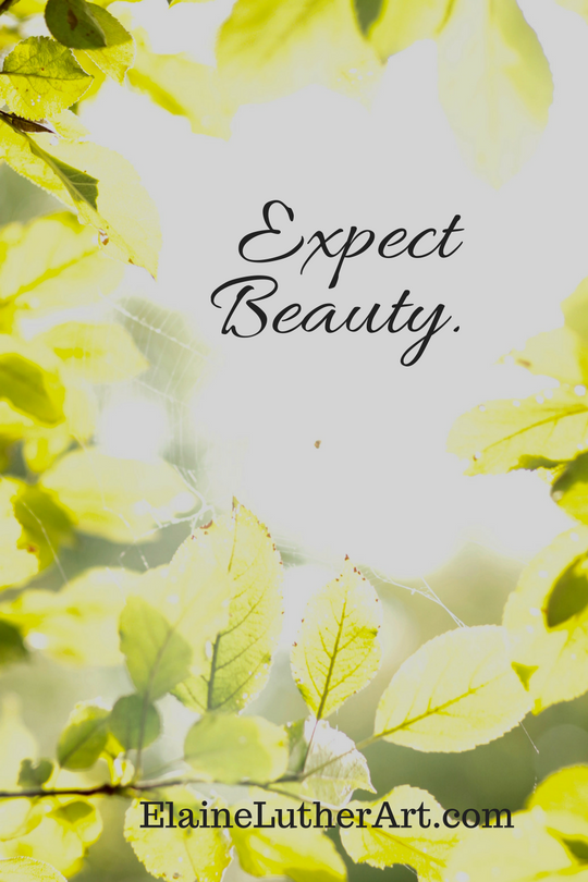 expect-beauty image quote from ElaineLutherArt.com